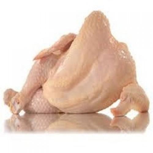 Fresh Raw 100 % Halal Chicken, order online raw chicken & mutton