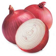 Onion / Kg